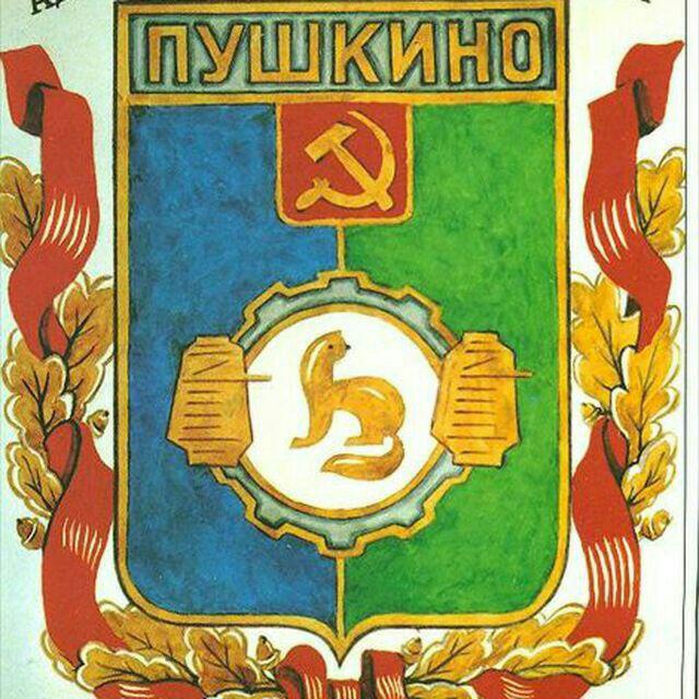 Телеграм чат «Пушкино»
