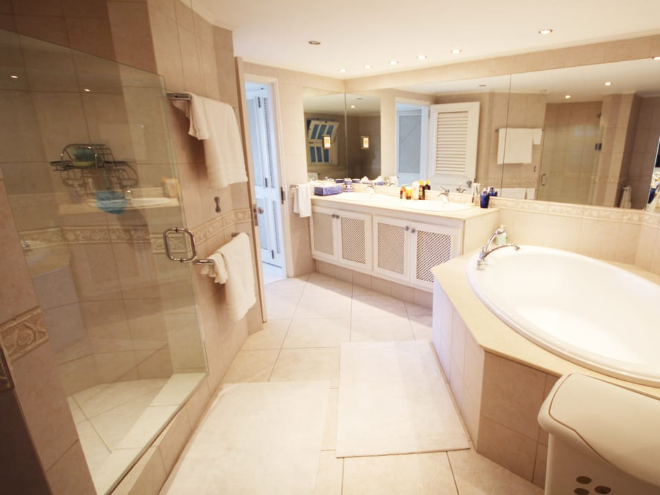 Large bathroom with jacuzzi tub and shower