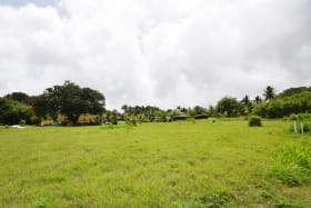 Piedmont development