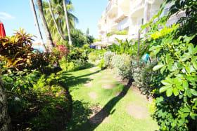 Beautifully manicured garden and walkway