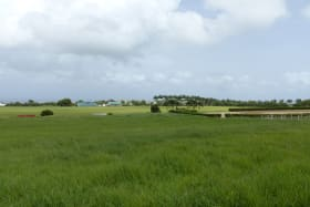 View towards the Polo Field