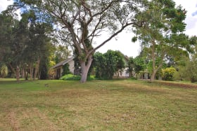 Beautiful lot with Mature Trees