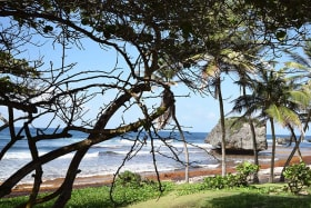 Nearby Bathsheba