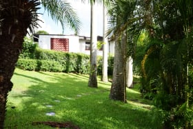 Lawns with Royal Palms