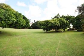Expansive gardens