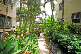 Lush garden path leads to swimming pool jacuzzi and beach access