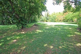 Wide spacious lot - good for building