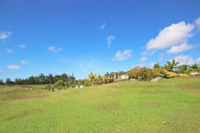 Lion Caste Estate