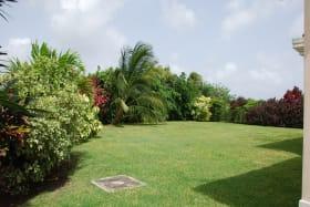 Large lawns