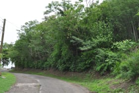 Grand Anse Hillside Lot