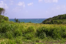 Karib Beach Lot 17A