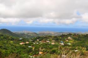 Mount Maitland Heights