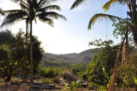 Caribbean View Lot B