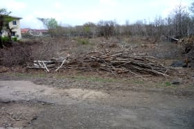 Fort Jeudy No 37