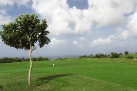 lot looking to golf course