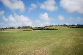 Lion Castle Polo Estate Lot 17A