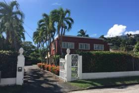 Palm Avenue 8