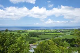 West coast views
