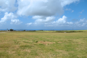 Plantation Land With Distant Sea View