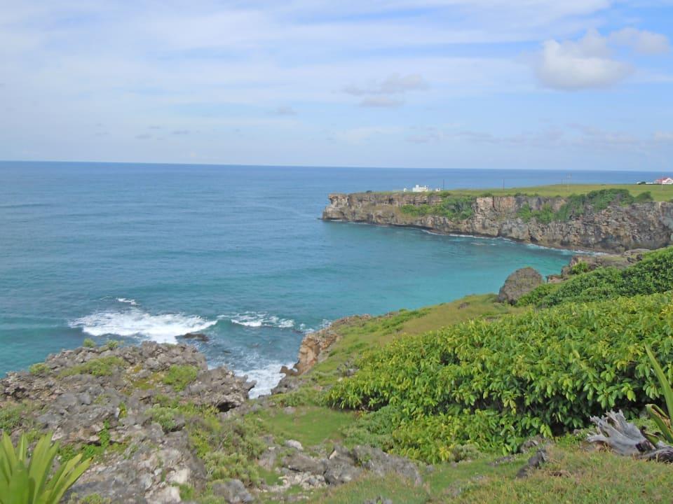 Views of the Ocean
