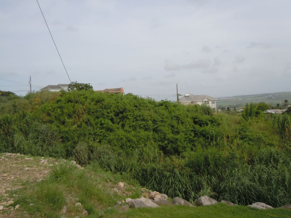 lot and view