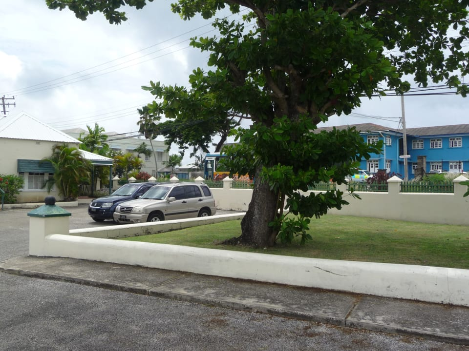 FRONT LAWN WITH A VIEW OF A PART OF THE PARKING AREA