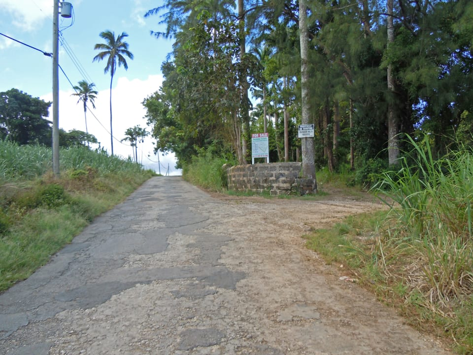 road in front of lot