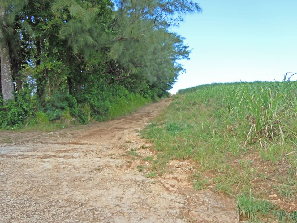 track to one of the lots