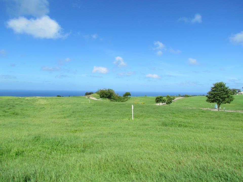Views of the west coast of Barbados