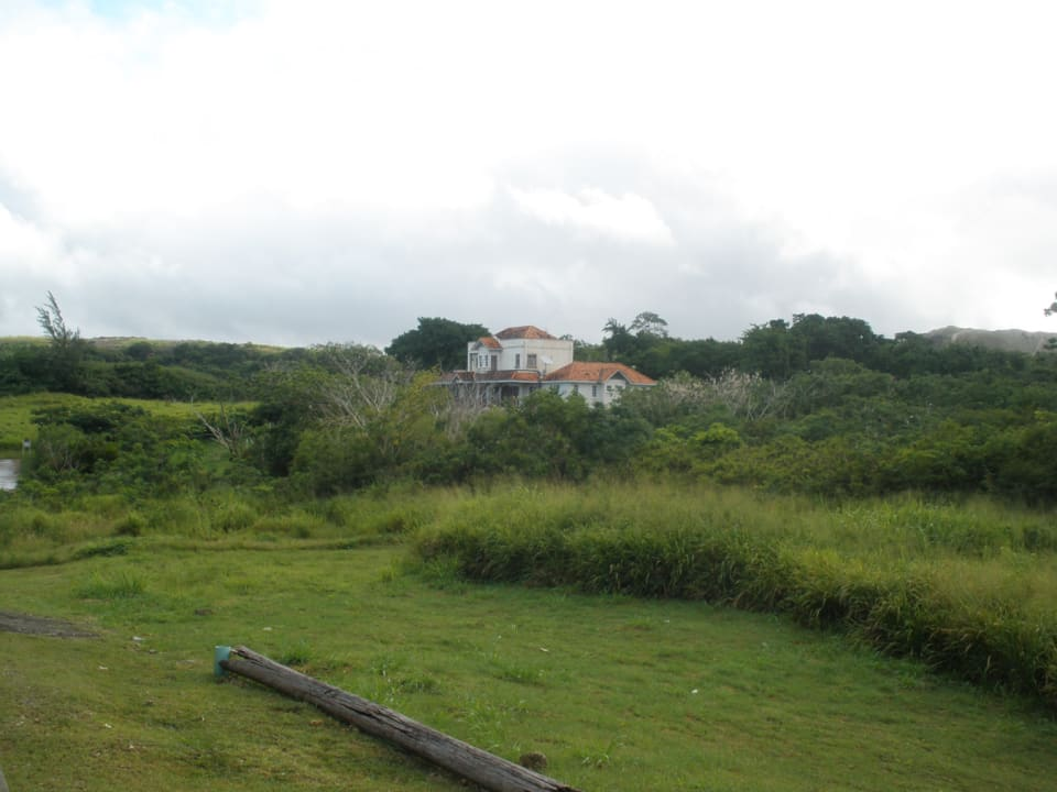 View of lot from adjacent plot (Lot 33) facing north. House in background on adjacent Lot 35