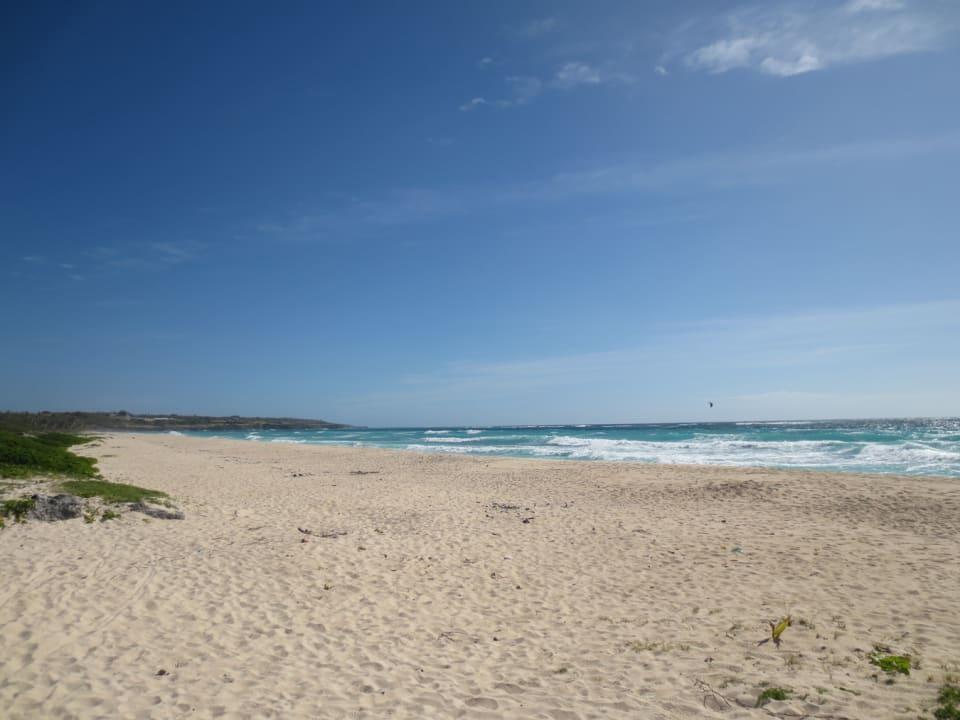Sandy beach in front of plot