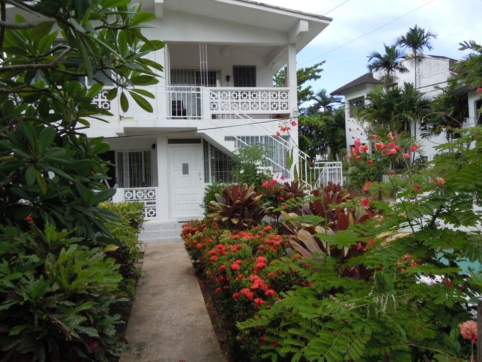 Beautiful Barbados Garden