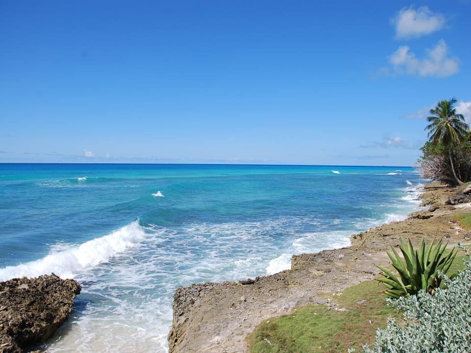 Beautiful Barbados Coastlne