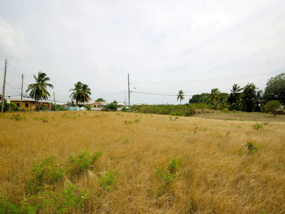 View of Lot 3