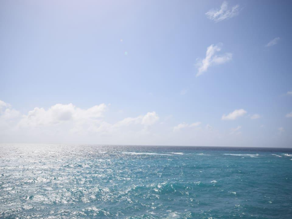 Silver Caribbean Sea