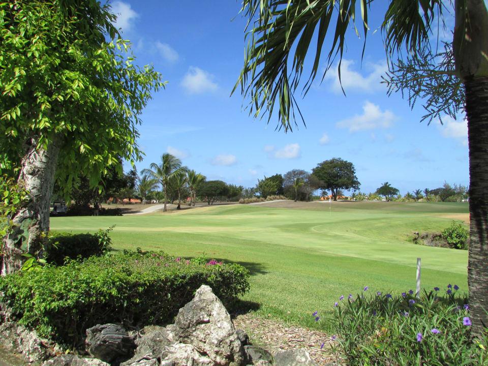 Golf Course Views