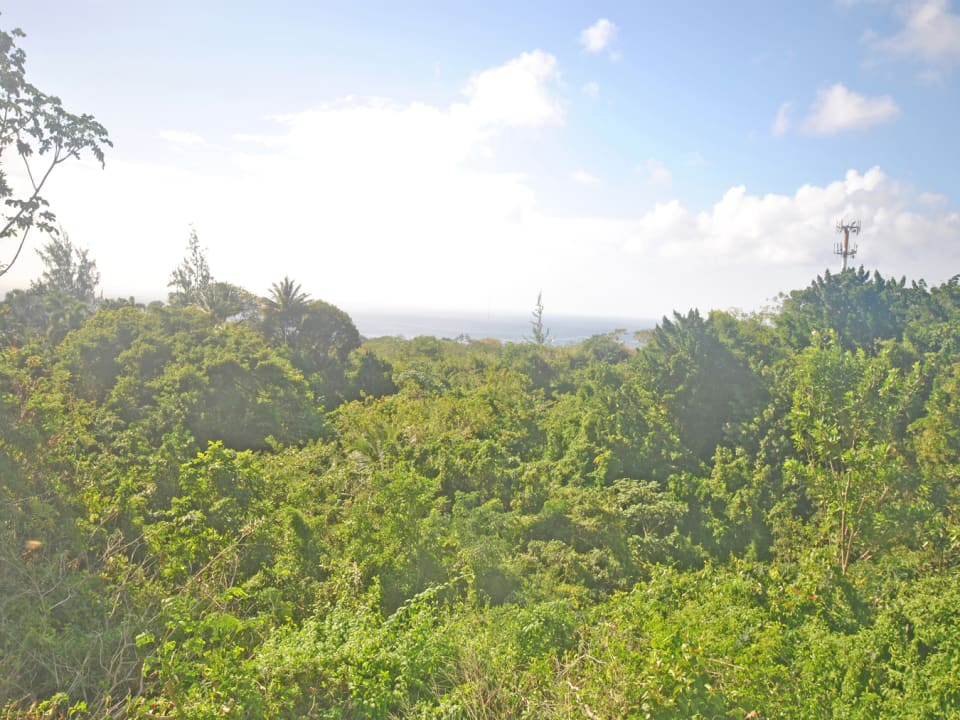Fabulous green view and ocean view from lot 17