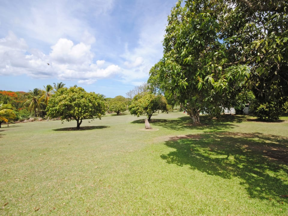 Extensive lawns and orchards