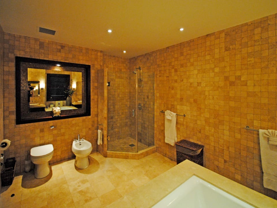 Master bathroom separate tub and shower