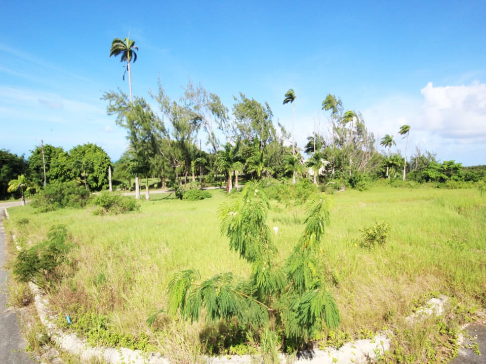 View of Lot 2