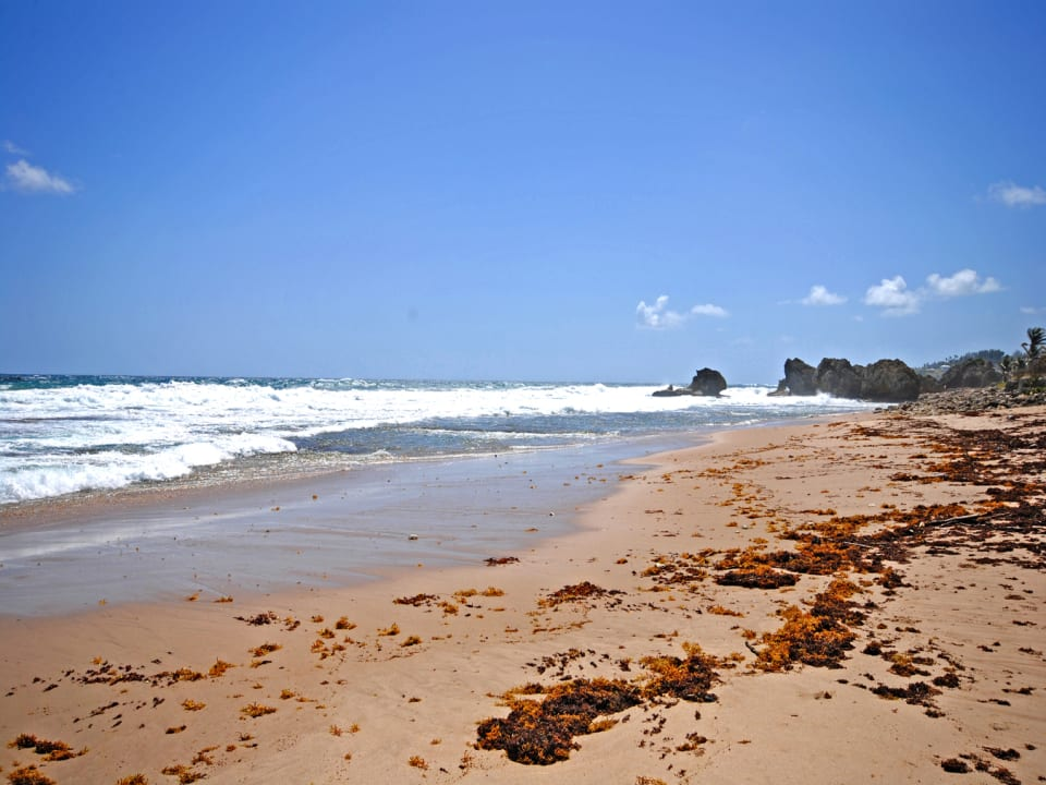 Beautiful Cattlewash beach