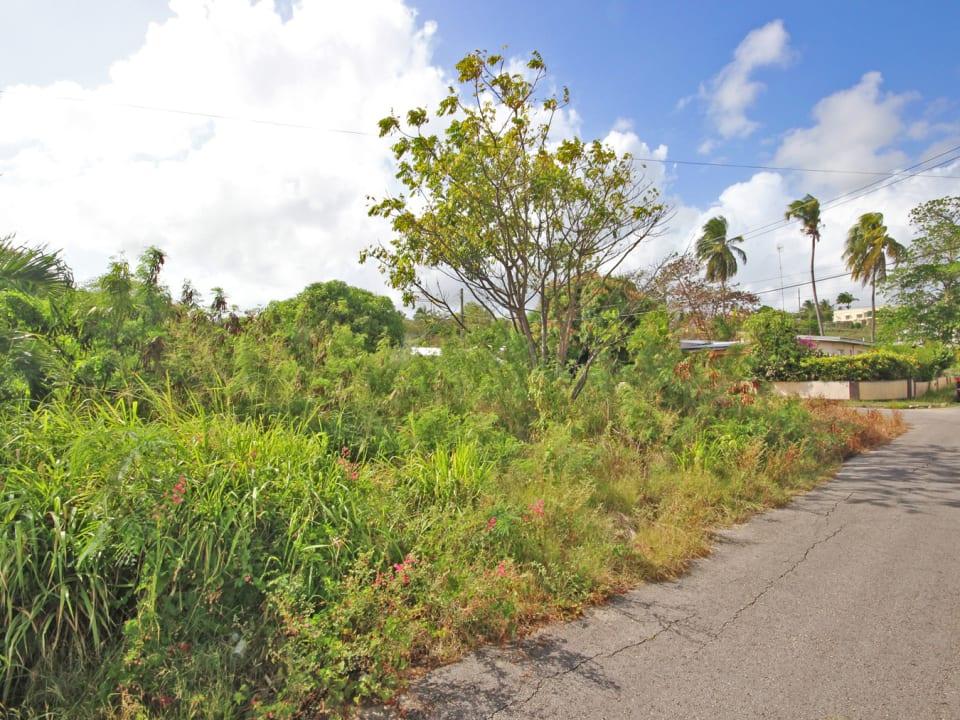 Quiet residential subdivision