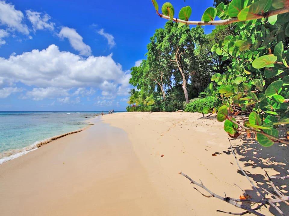 Fantastic beachfront