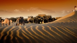 The Romantic Tourist - United Arab Emirates