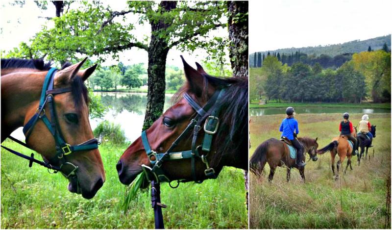 Horses lakeside | Horseback tour through Tuscany