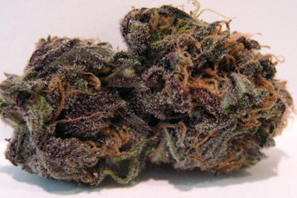 Purple Mr. Nice
