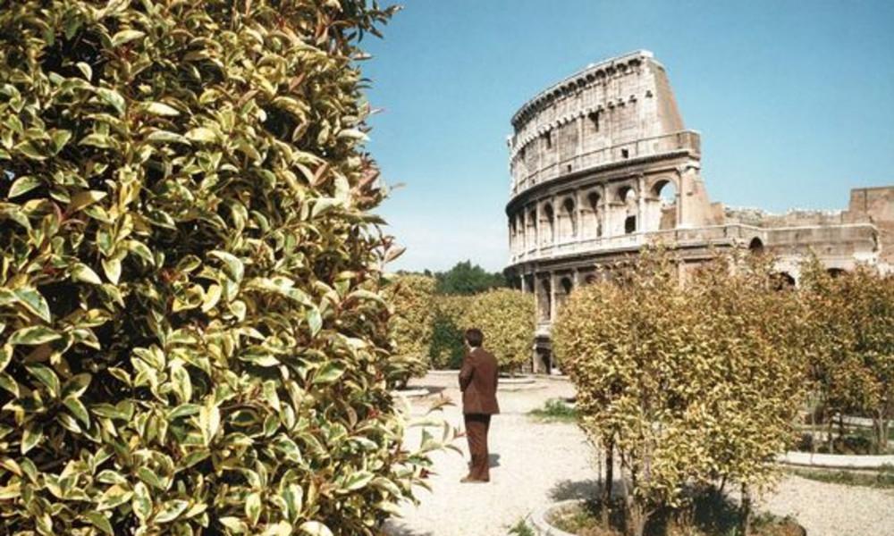 P Johnson's Guide to Roma, Italia