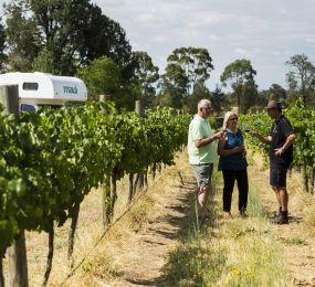Victoria Wineries
