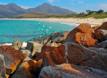 Get inspired with Maui, Tasmania