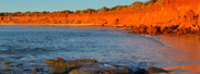 Shark Bay Coastal Tours